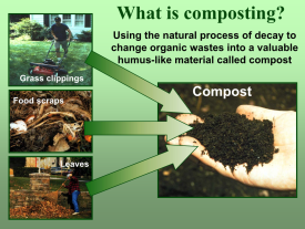 Components of compost